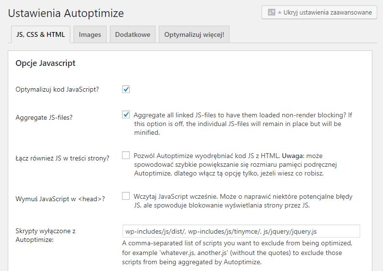 Ustawienia wtyczki WordPress Autoptimize