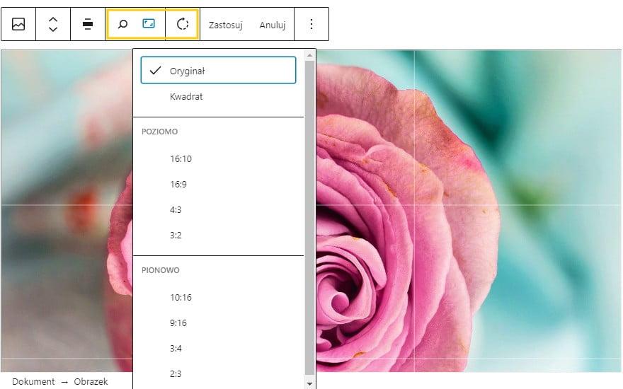 Aktualizacja WordPress do wersji 5.5 - wnosi łatwiejszą edycja obrazków już z poziomu bloków! Zrzut z ekranu edycji.