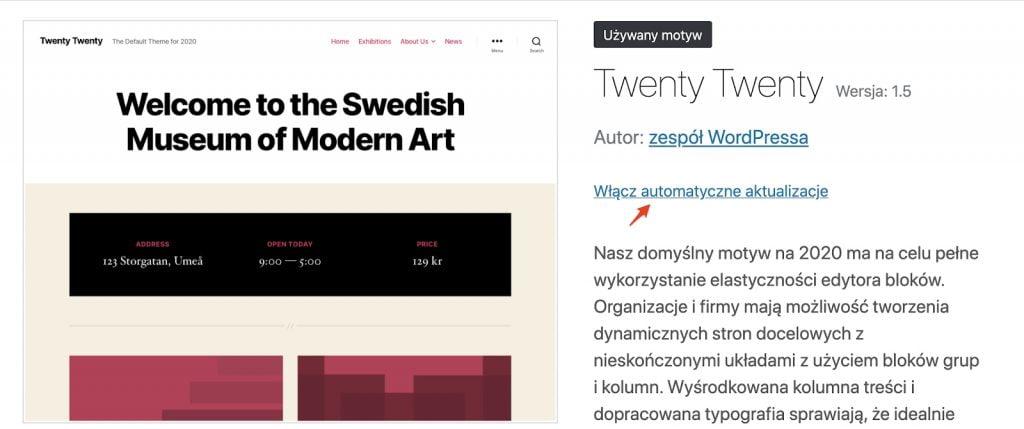 Przycisk włącz automatyczną aktualizację dla motywu w WordPress 5.5